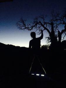 TwilightCreatve