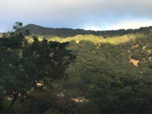gordon valley napa